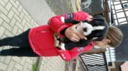 Alternative Bulldogge Dogo