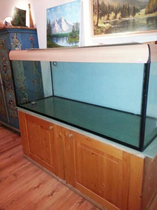 aquarium 200 kleinanzeigen tiermarkt deine. Black Bedroom Furniture Sets. Home Design Ideas