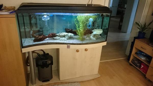 aquarium einrichtung neu und gebraucht kaufen bei. Black Bedroom Furniture Sets. Home Design Ideas