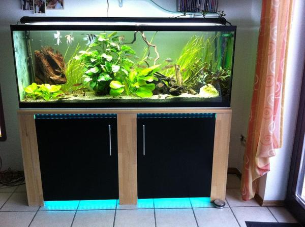 aquarium 380l unterschrank mit komplettem zubeh r l nge 160 cm breite 40 cm h he 60 cm in. Black Bedroom Furniture Sets. Home Design Ideas