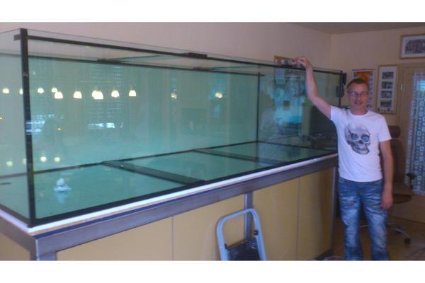 stuttgart bild 8 der kleinanzeige aquarium nach ma beim vivarienhaus landau. Black Bedroom Furniture Sets. Home Design Ideas