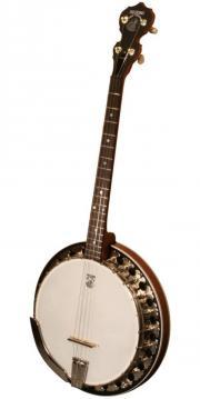 Banjolehrer gesucht!