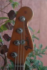 BassGitarre gesucht: Fender,
