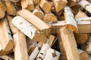 Birken - Brennholz abzugeben