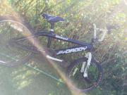BMX BIG DANDY