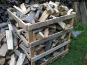 Brennholz Buche frisch