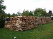 Brennholz, Buchenholz und