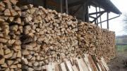 Brennholz ofenfertig/33cm