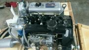 Dieselmotor Yangdong Y385