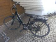 E-Bike Pegasus