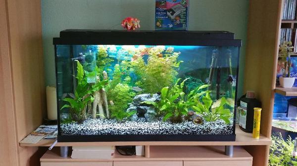 aquarium luftpumpe neu und gebraucht kaufen bei. Black Bedroom Furniture Sets. Home Design Ideas