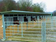 erweiterbare Pferde Außenboxen