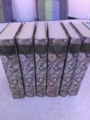 Goethe Sonderbände Kleines