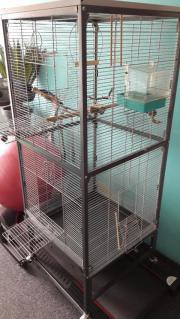 Großer geräumiger Vogelkäfig