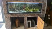 großes Aquarium