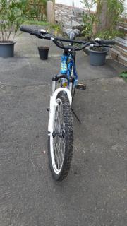 Herren Mountain Bike