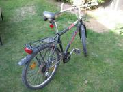 Herrenfahrrad, Mountainbike, 21