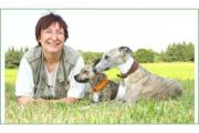 Hundeschule Amperland- Artgerecht -