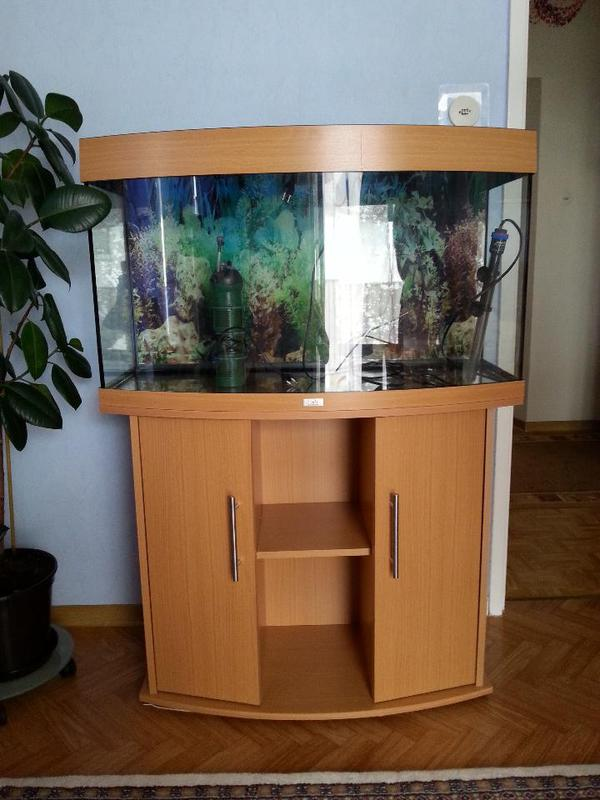 aquarium fische zubeh r in pfungstadt kaufen bei deine. Black Bedroom Furniture Sets. Home Design Ideas