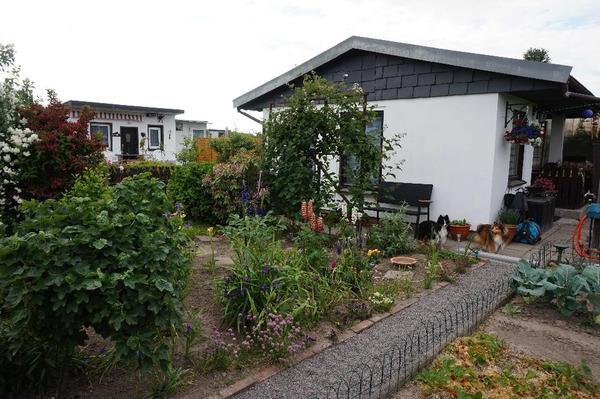 kleingarten pachtgarten garten mit steinlaube in schkeuditz schreberg rten wochenendh user. Black Bedroom Furniture Sets. Home Design Ideas