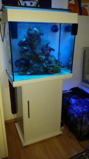 Kompl. Meerwasseraquarium JUWEL