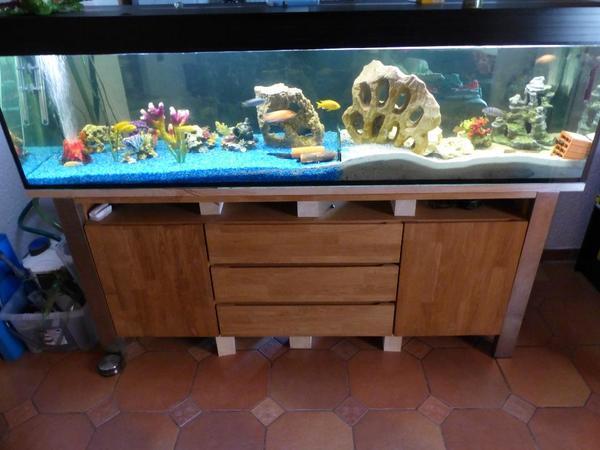led malawi barsch aquarium komplett 200 x 50 x 50 eheim in billigheim ingenheim fische. Black Bedroom Furniture Sets. Home Design Ideas