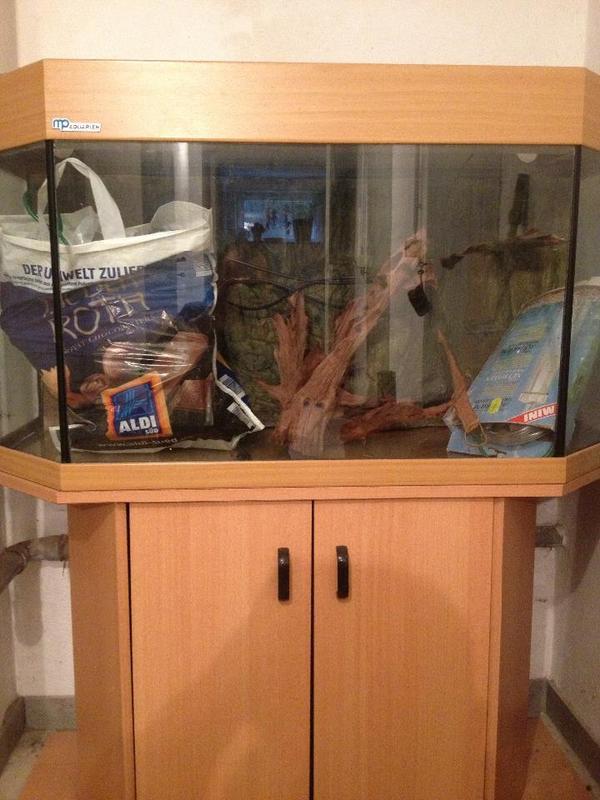 aquarium mp kleinanzeigen tiermarkt deine. Black Bedroom Furniture Sets. Home Design Ideas