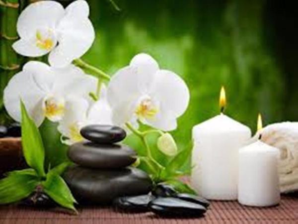 erotische lomi lomi massage singlebörsen kostenlos