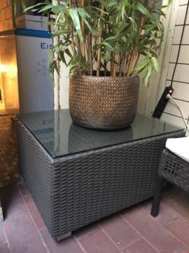 garten pflanzen zu verkaufen local24 kostenlose kleinanzeigen. Black Bedroom Furniture Sets. Home Design Ideas