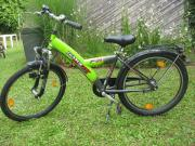 Pegasus Fahrrad 24