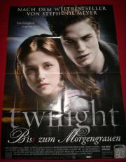Riesenposter Twilight