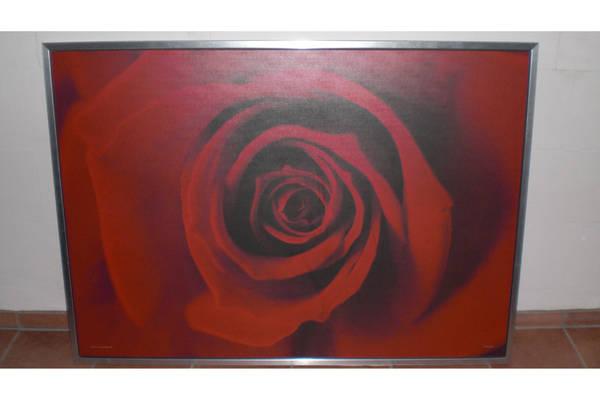 Riesiges bild ikea rose mit metallrahmen in ammersbek for Ikea dekoartikel