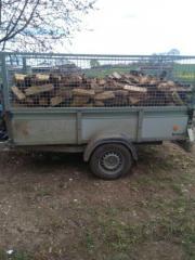 sie brauchen brennholz