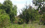 Suchen schönen Garten