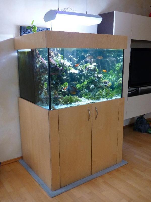 aquarien 40 neu und gebraucht kaufen bei. Black Bedroom Furniture Sets. Home Design Ideas