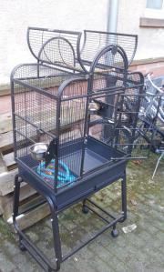 montana cages tiermarkt tiere kaufen. Black Bedroom Furniture Sets. Home Design Ideas