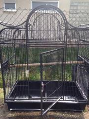 vogelkaefig antik tiermarkt tiere kaufen. Black Bedroom Furniture Sets. Home Design Ideas