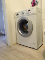 Waschmachine Haier HW50-