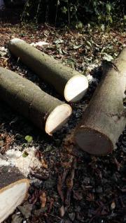 Weiches Lindenholz für