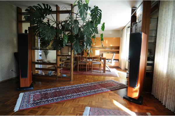Zimmerpflanze monstera fensterblatt in linkenheim hochstetten pflanzen kaufen und verkaufen - Zimmerpflanze monstera ...