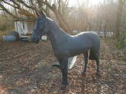 Zu Verkaufen Pferd