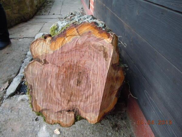 Oberhausen Rheinhausen  Holz kaufen und verkaufen über private