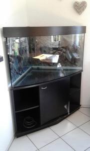 Aquarium 350Liter