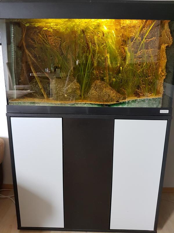 Biofilter kleinanzeigen kaufen verkaufen bei deinetierwelt for Aquarium 80 litres