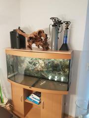 Aquarium Juwel 260l