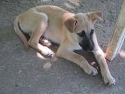 Billbo, 4 Monate