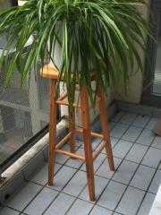 Blumenhocker Holz stabil 80 x