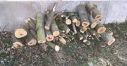 Brennholz zum günstigen