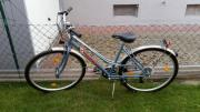 Damen Herren Fahrrad