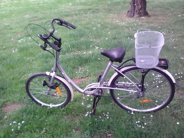 Damenfahrrad » Damen-Fahrräder
